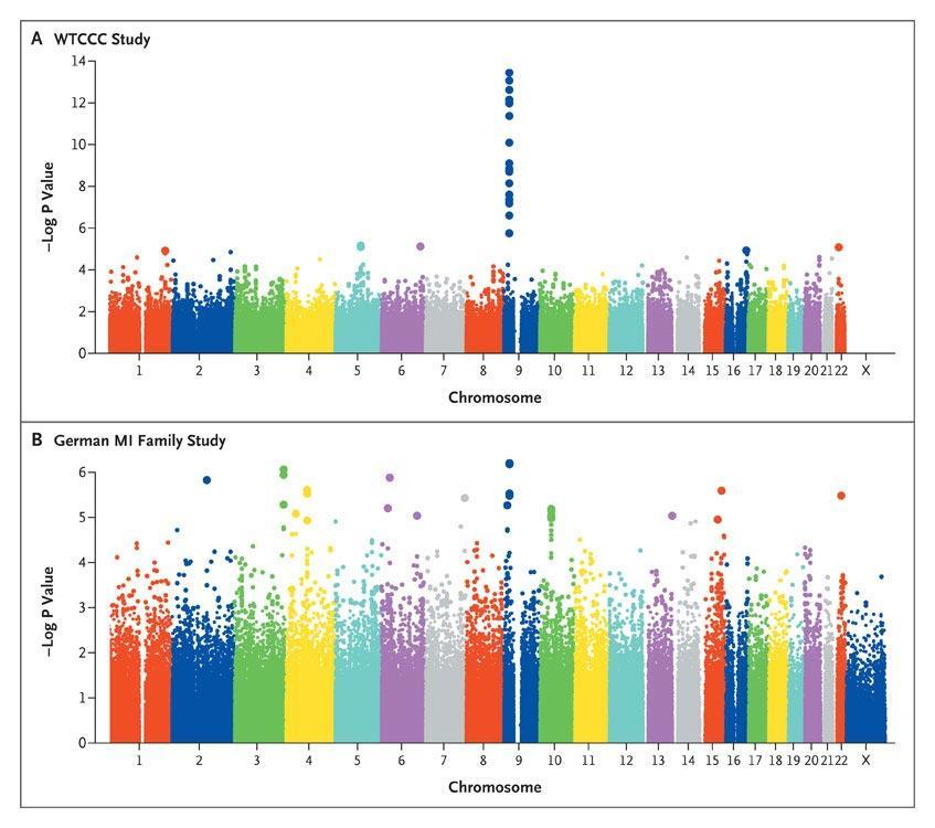 CXCL12 expression in atherosclerosis, correlation of plasma levels with stable