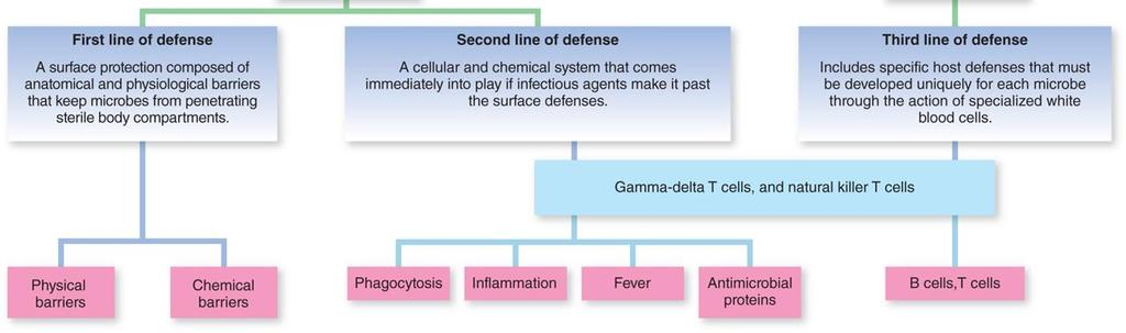 12.1 Defense Mechanisms of the Host Immunity: Ability to.