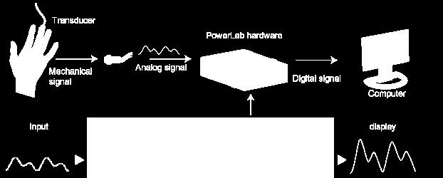 convert them from Analog to Digital (A to D) and then, with
