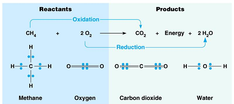 What s different in the electron sharing of the reactants vs. the products? Where does this energy come from?