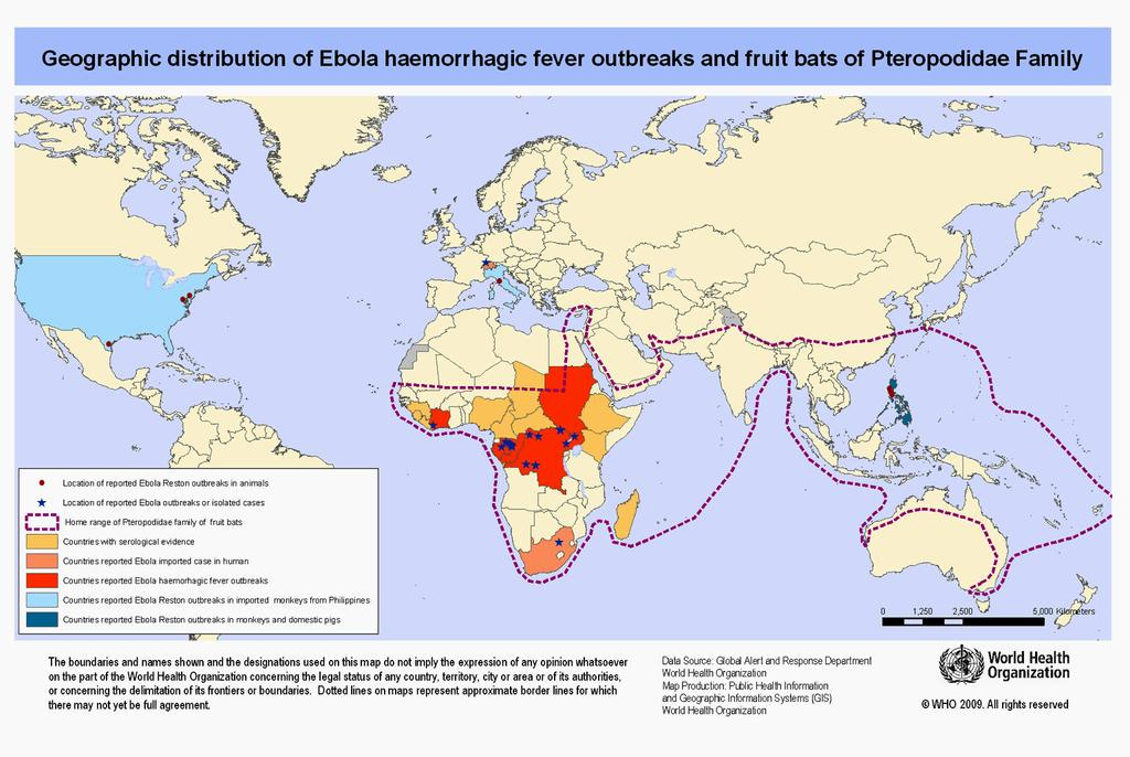 of Ebolavirus. ~80 x 1000 nm Infection results in Ebola hemorrhagic fever (EHF).