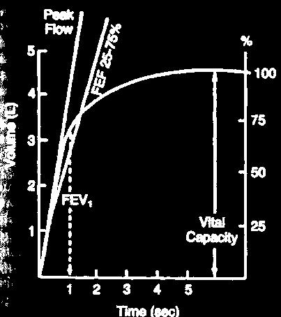 Forced Expiratory Flow 25-75% (FEF 25-75 ) Mean forced expiratory flow