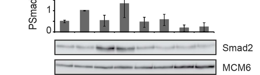 Fig. S10. Restimulation of naïve cancer cell lines with medium from the D3 line.