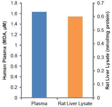 DATA ANALYSIS Figure 3: Measurement of MDA in human plasma (20 µl) and rat liver