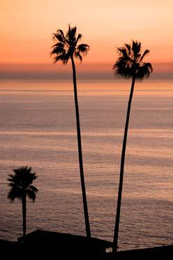 Laguna Beach is one hour from Los Angeles, San Diego, and Riverside. It is 30 minutes from Disneyland.