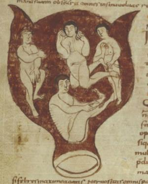 Each fetus had full growth of head hair and was portrayed as an adult. A. MS 3701-15. B. MS 3701-15. C. MS 3701-15. Figure 4.
