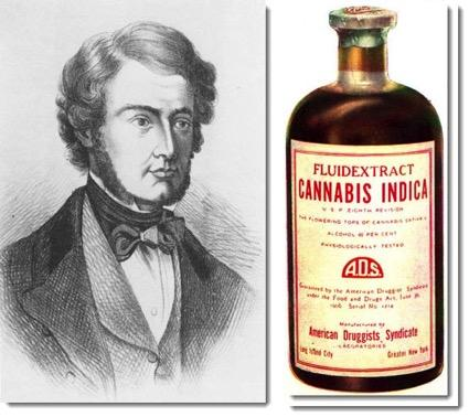 WB Shaughnessy Used as an analgesic, sedative, antiinflammatory, antispasmodic, and anti-convulsant.
