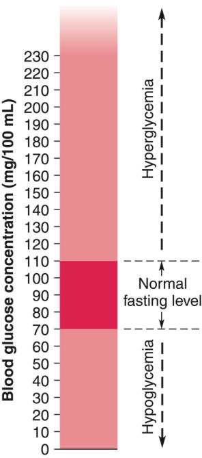 Blood Sugar Levels Hyperglycemia occurs when blood sugar levels are above the normal fasting level.