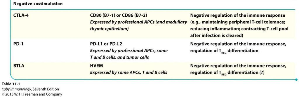 Mechanisms of Peripheral T Cell