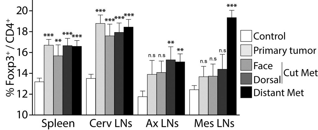 Figure S6: Percentage of Tregs in MT/ret mice according to their symptoms.