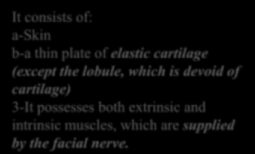 muscles, which are supplied
