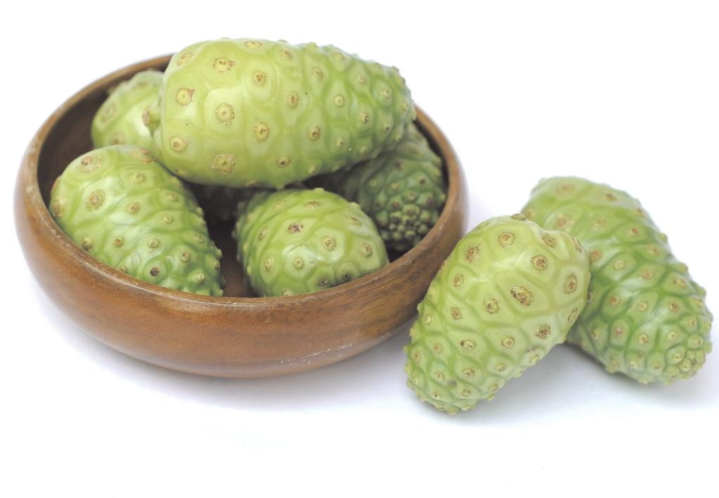 Noni Premium may help in boosting energy, improving digestion and might