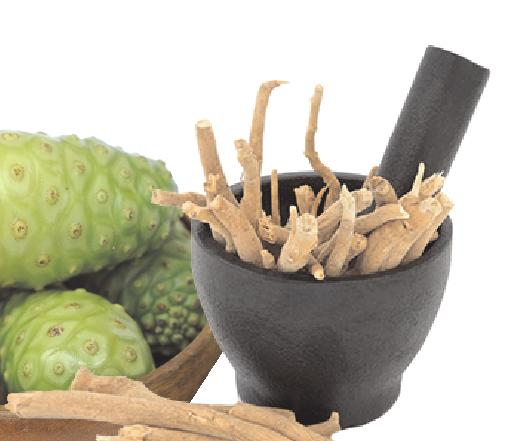 Noni has been used for overall Health rejuvenation, healthy heart rhyme,