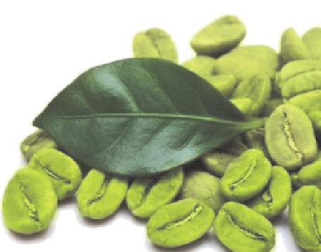 Green Coffee Bean offers antioxidant support *