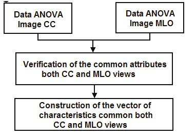 Fusion of Two-View Information: SVD Based Modeling for Computerized Classification of Breast Lesions on Mammograms Fusion of Two-View Information: SVD Based Modeling for Computerized Classification