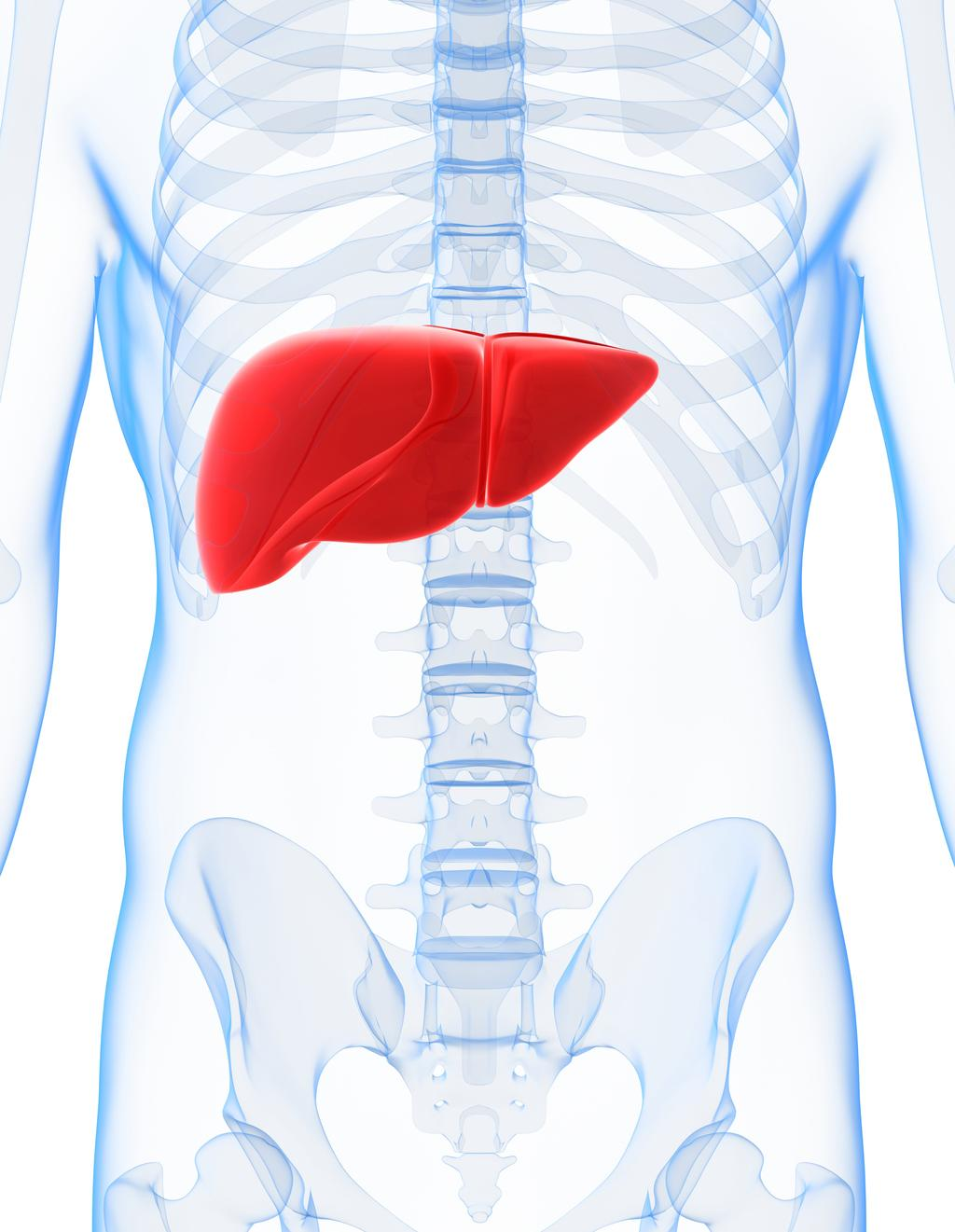 hepatology presented at the 2017 AASLD Meeting for