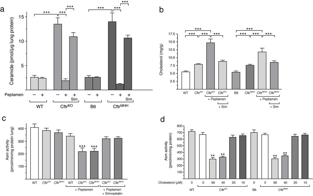 - 4 - Supplementary Fig. 1. High cholesterol levels inhibit acid sphingomyelinase (Asm) activity and normalize ceramide levels in CF mice.