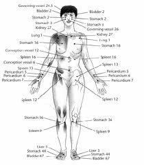 Meridians Pathologies and syndromes may be differentiated by many systems within Oriental Medicine and Meridian pathology is only one of them.