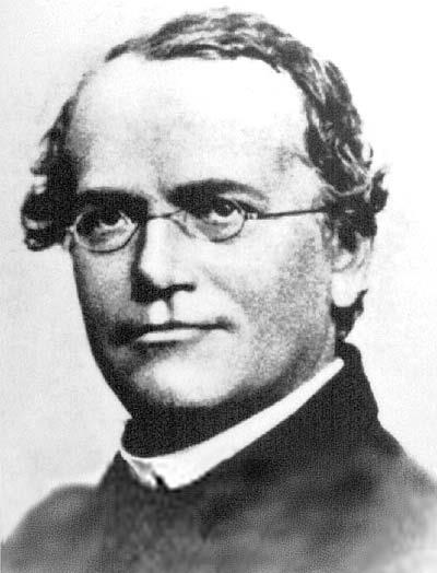 Genetics was founded by an Austrian monk named Gregor Mendel.