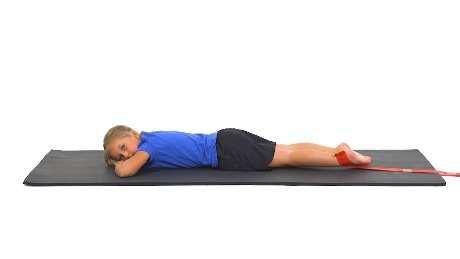 Prone Knee Flexion with Resistance Begin lying on your stomach with a band looped around your ankle that is anchored below you. Slowly bend your knee, bringing your foot towards your bottom.
