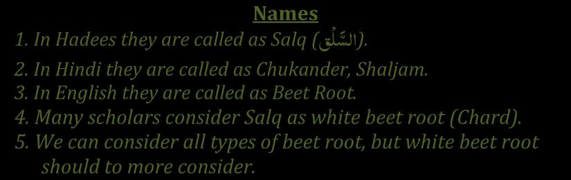 Tibb-e-Nabawi by Dr. Mohammed Shakeel Shamsi Names يق ( Salq 1. In Hadees they are called as.( اىع 2. In Hindi they are called as Chukander, Shaljam. 3. In English they are called as Beet Root. 4.