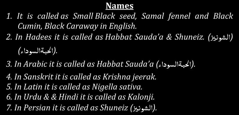 - : )ا لبۃاىعوداء ) (Kalonji) Lesson no. 45 Black Caraway Names 1. It is called as Small Black seed, Samal fennel and Black Cumin, Black Caraway in English. )اىؼو زي ) Shuneiz. 2.