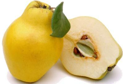 Prophet s guidance about it: - Benefits of Safarjal (Quince) on Qalb, Breath, Chest & Heart: - 1.