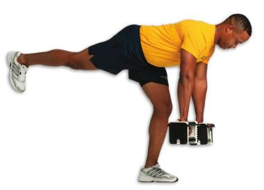 takes advantage of FULL EQUIPMENT using dumbbells and body weight as the primary source