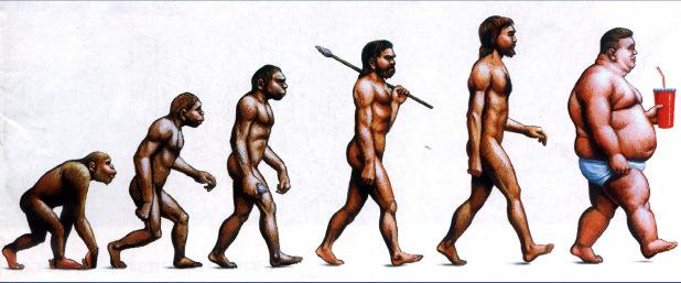 Evolution of