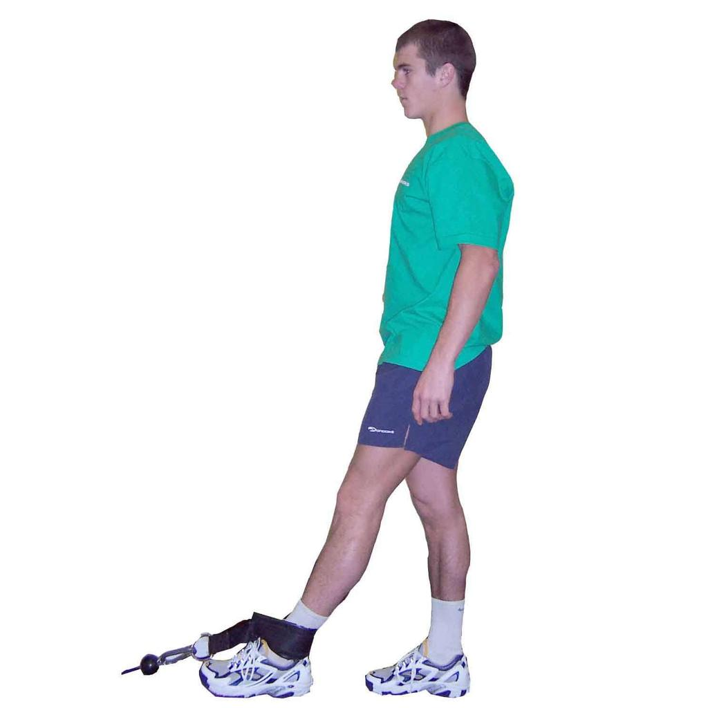 feet flat on floor Stand up slowly, bar close to chins & thighs Maintain normal spinal curvatures throughout movement Reverse the action to