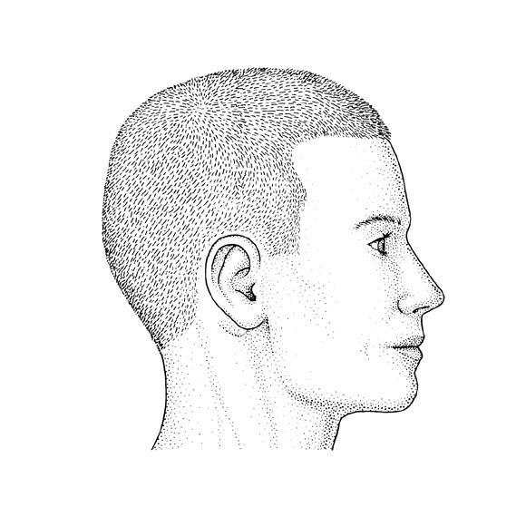 Case Studies Which part of the head