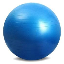 FOAM ROLLER & EXERCISE BALL-QUIZ Name: 1. Important instructions to follow for safety on the foam roller include: a. Slowly roll back and forth b. Do not allow your back to arch c.