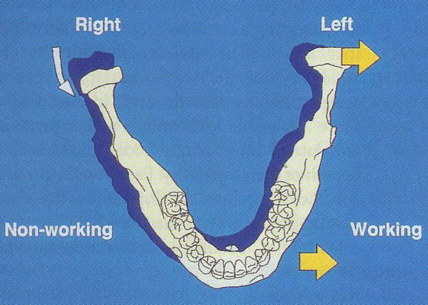 It is the simultaneous contacting of the maxillary and mandibular teeth on the right and left