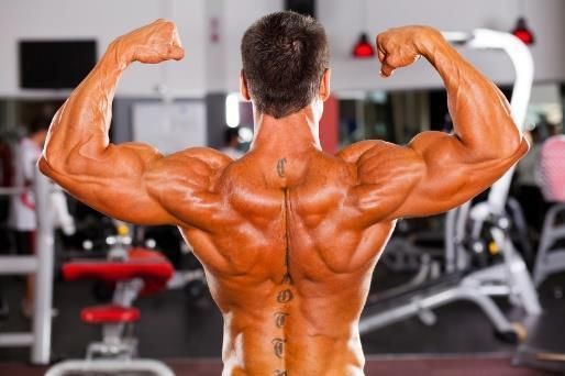 6 WEEK MASS GAINER EXPLODE YOUR MUSCLES THE ROUTINE You will be performing this routine for 6 weeks. In this time you will focus your energy on the demand of the lift.