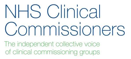 CCG Lay Members, Non-Executive Directors and STP Governance and Engagement 1.