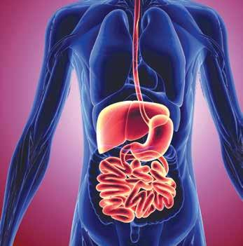 The digestive tract, and the colon particularly, is very important to the state of your immune system.