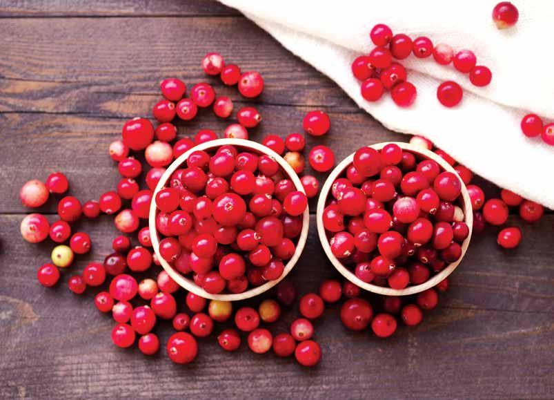 URINARY HEALTH Discover the Science Behind the Folklore A berry-rich diet provides optimal urinary support.