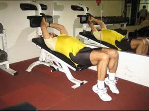1. Lower Abs - Crunch : Muscle: Lower abdominals / Rectus abdominis Resistance: Legs Body Connection: Arms Adjust bench to a 45 or 30 degree angle.