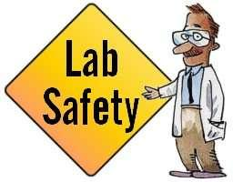 Science Safety You will work with your partner.