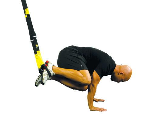 Trx holiday training plan pdf 16 exercise library trx crunch series trx crunch on forearms trx crunch on hands progression 2 trx oblique crunch on forearms progression 3 trx atomic fandeluxe Images