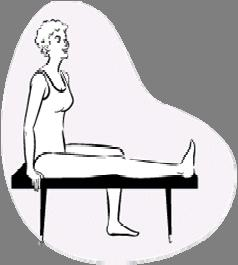 The Workout Legs (continued) Seated Hamstring Stretch Sit sideways on bench or other hard surface (such as two