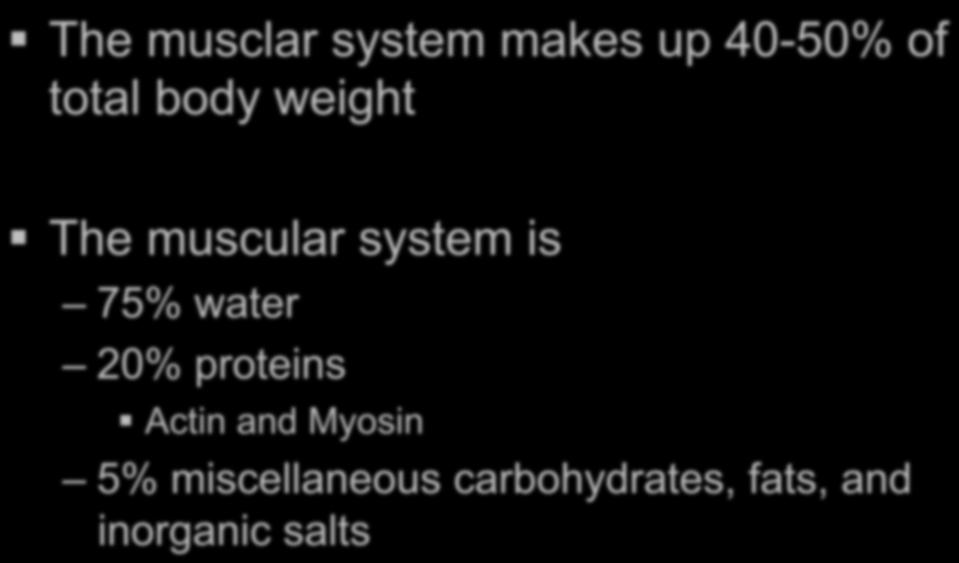 The Muscular System Objective The Student Will Become Familiar