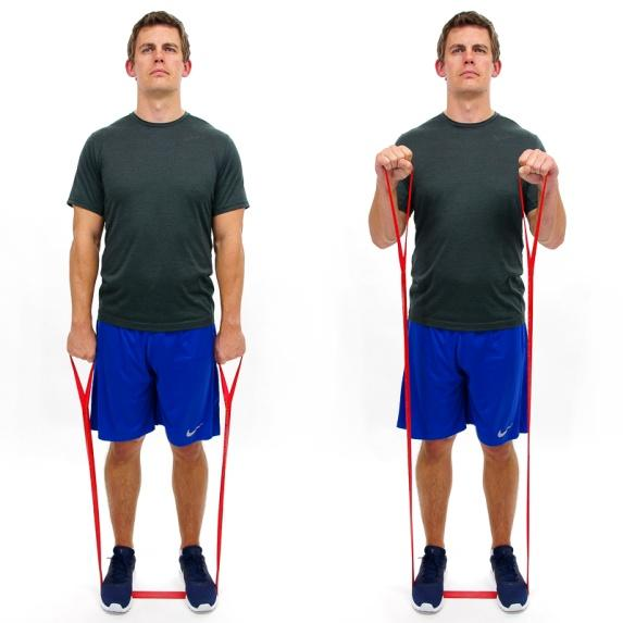 CLX - BICEPS CURL - BRACHIALIS In a standing position, step on the CLX one loop width apart.