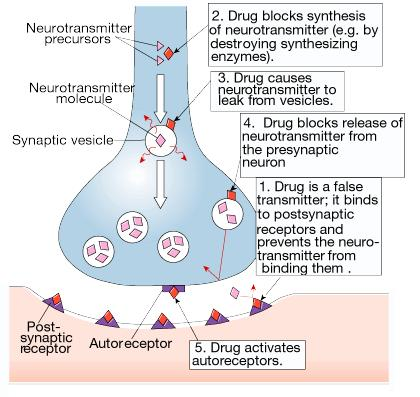 Antagonists 11 A drug which