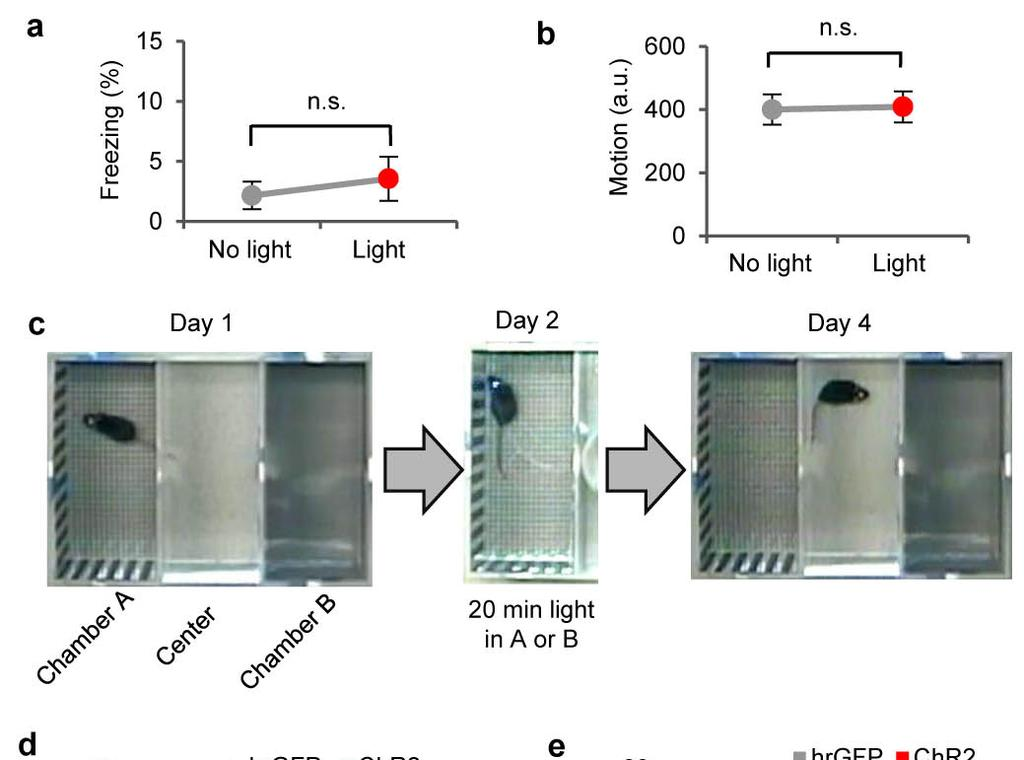 Supplementary Figure 4 Freezing, place preference and conditioned taste aversion of activating CEl PKC-δ + neurons a-b.