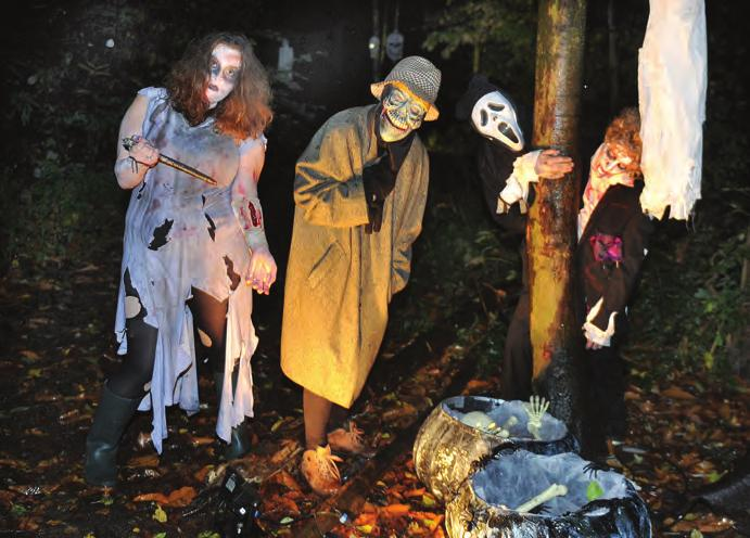 local stories spooky times at prince s park Were you brave enough to venture down to Irlam s Prince s Park this Halloween and walk in the enchanted wood?