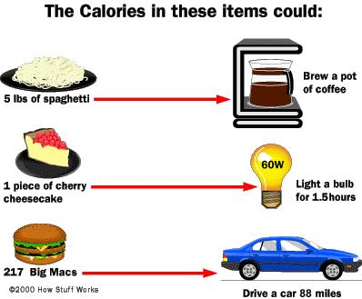 9.1 CHEMICAL PATHWAYS A calorie is the amount of energy needed to raise the temperature of 1